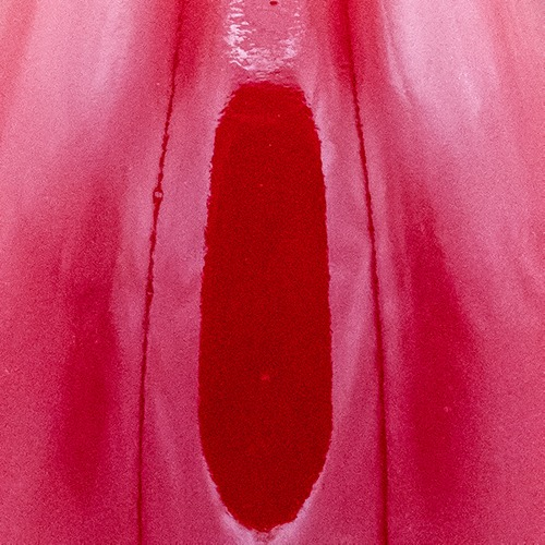 Weinfarbe Himbeerfarben